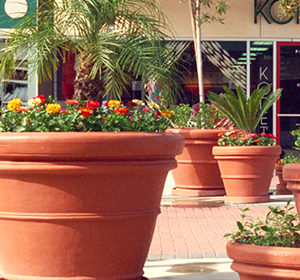 5-shopping-center-resin-planters-300x280